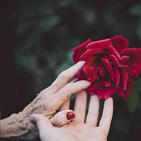 Hidden Fortune Elder Care